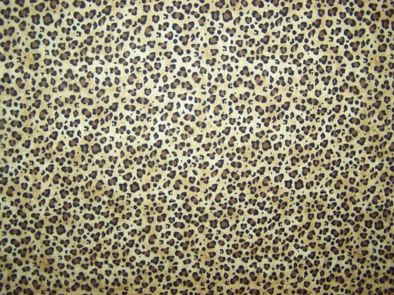 small leopard print 6 - Small Animal Pictures To Print